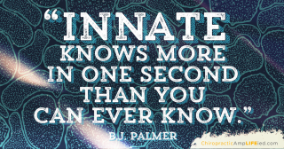 Innate Knows - Explore Chiropractic