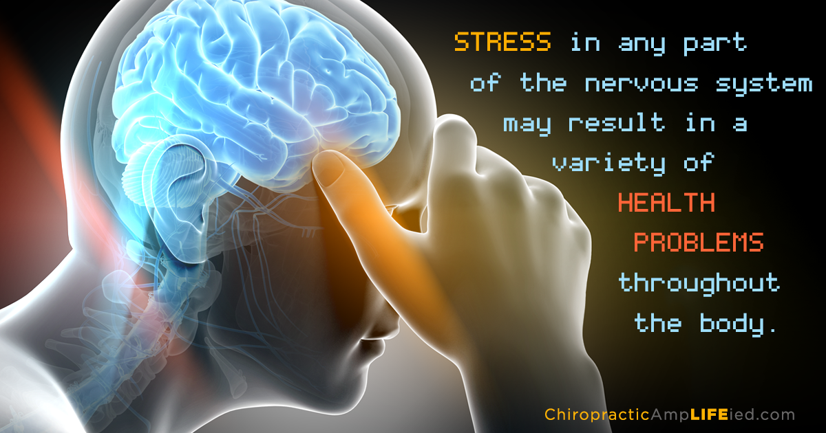 a report on stress and its effects on the body
